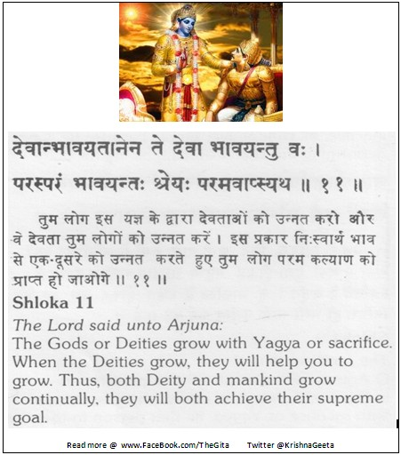The Gita - Chapter 3 - Shloka 11