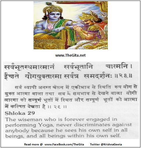 The Gita - Chapter 6 - Shloka 29