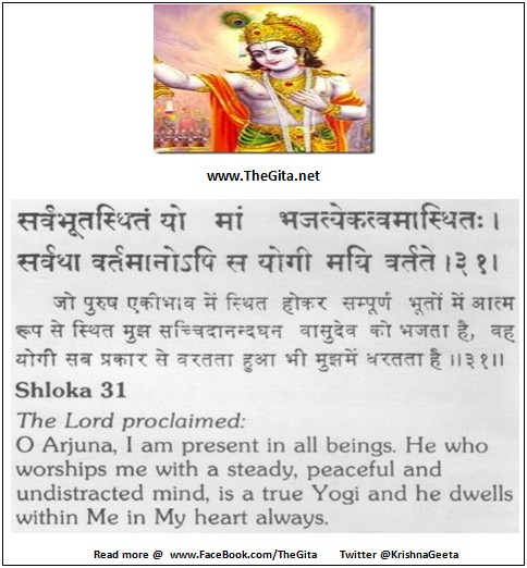 The Gita - Chapter 6 - Shloka 31