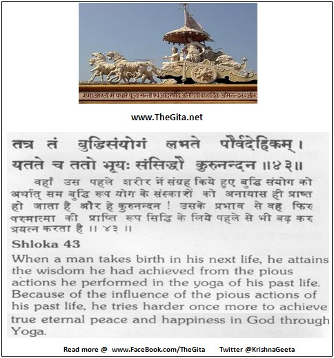 Bhagwad Geeta 6-43- TheGita.net