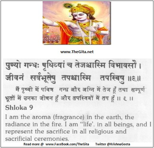The Gita - Chapter 7 - Shloka 09