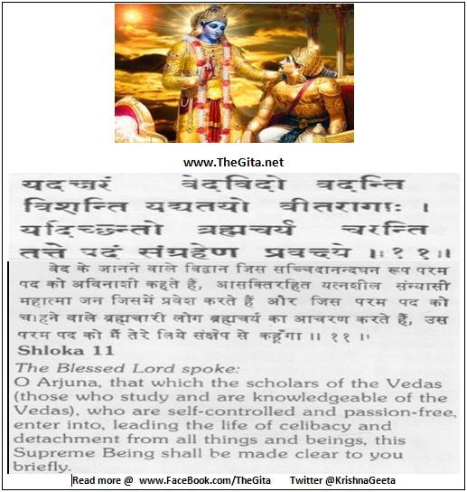 Bhagwad Geeta 8-11- TheGita.net