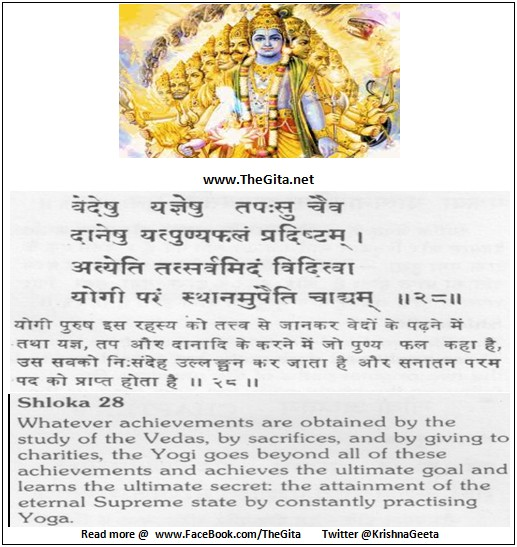 The Gita - Chapter 8 - Shloka 28