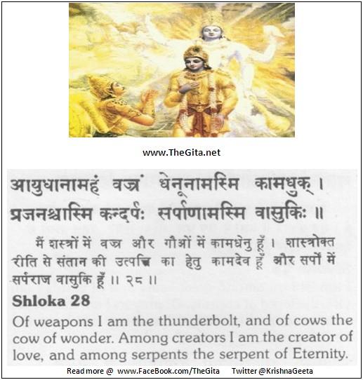 The Gita - Chapter 10 - Shloka 28