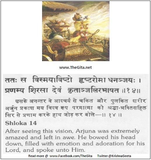 The Gita - Chapter 11 - Shloka 14