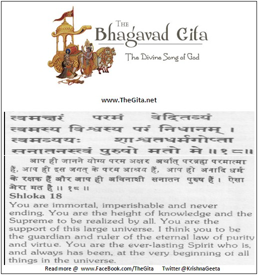 The Gita - Chapter 11 - Shloka 18