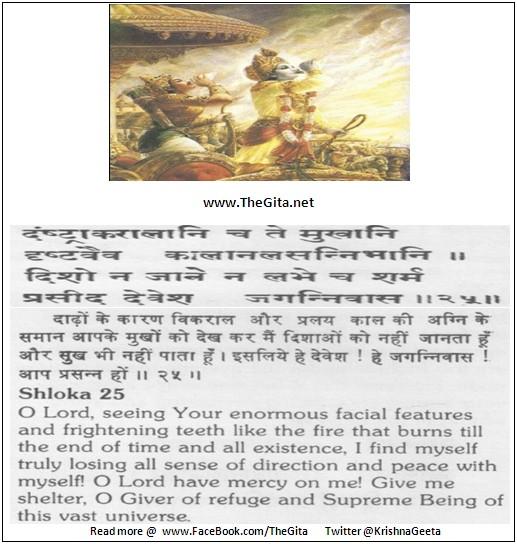 The Gita - Chapter 11 - Shloka 25