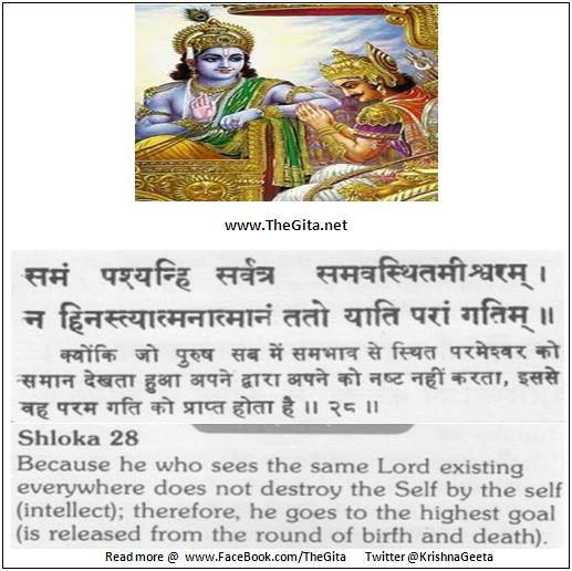 The Gita – Chapter 13 – Shloka 28