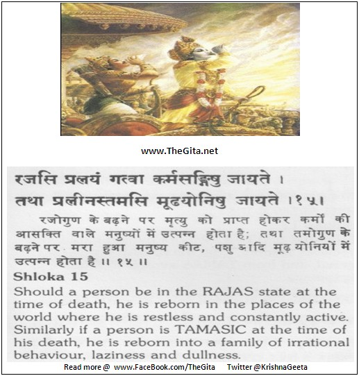 The Gita – Chapter 14 – Shloka 15