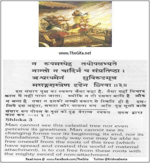 Bhagwad Geeta 15-03- TheGita.net