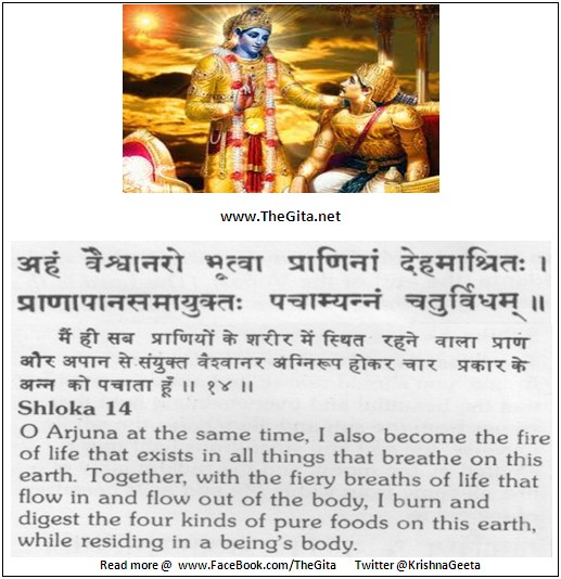 The Gita – Chapter 15 – Shloka 14