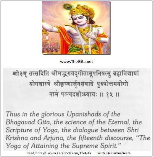 The Gita – Chapter 15 – Complete