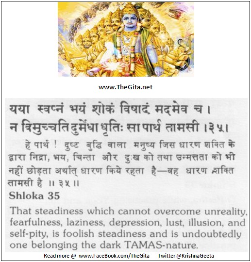 The Gita – Chapter 18 – Shloka 35