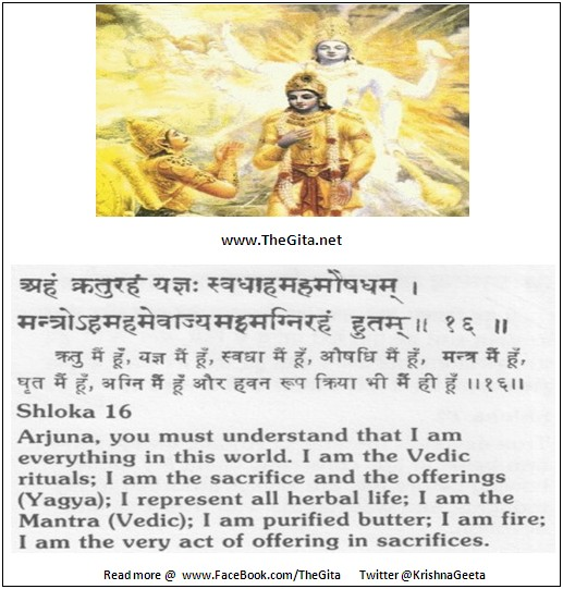 The Gita - Chapter 9 - Shloka 16