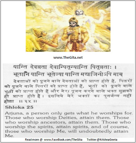 The Gita - Chapter 9 - Shloka 25