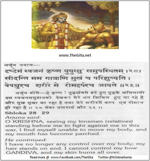 The Gita – Chapter 1 - Shloka 28-29