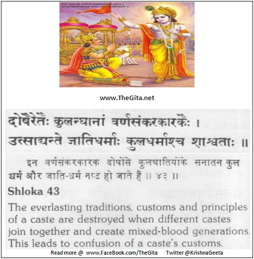 The Gita – Chapter 1 - Shloka 43
